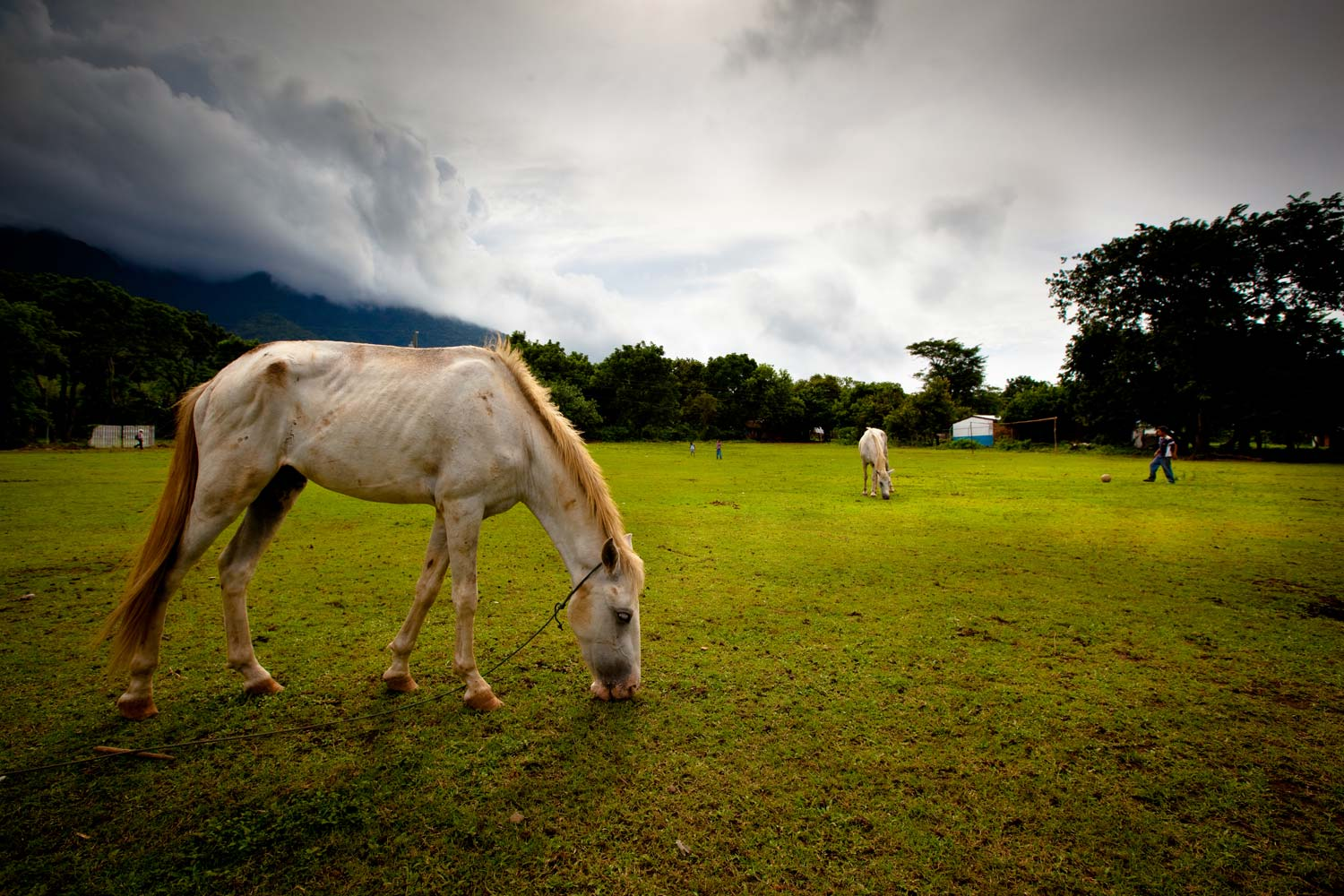 Football pitch, from the Ometepe series